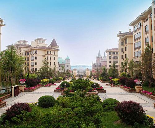 Maple Dan Li City